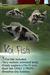 Japanese Koi Fish (Black/White)