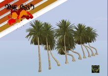 .:: ONE GRID ::. Tropical Palm Trees Pack