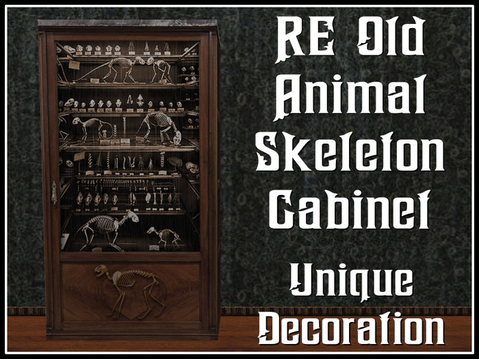 RE Old Animal Skelton Cabinet - Haunted House or Spooky Decoration/Decor