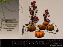 . a i s l i n g . Pumpkins & Red flowers