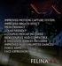 Felina ad text