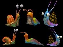 Giant Snails - Full Perm