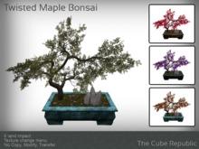 Japanese Maple Knarled Bonsai mesh