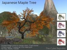 Twisted Maple mesh tree