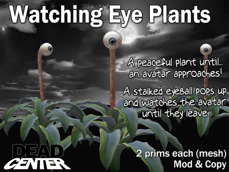 Dead Center: Watching Eye Plants