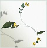*LODE* Headwear - Bugambilia [yellow]