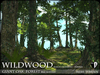 Trees - WILDWOOD Giant Oak Tree Forest Modules - Season Changing