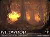 Wildwood giant oak forest base autumn 2