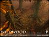 Wildwood giant oak forest base autumn 1