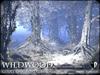 Wildwood giant oak forest base winter 1