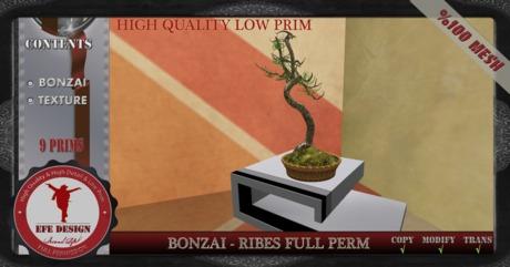Bonzai-Ribes Full Perm EFE DESIGN