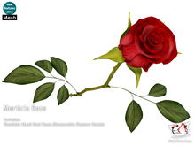 ^;^CaTwA^;^ Morticia One Rose