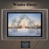 Winterscapes - Winter Glory