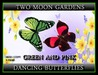 Dancing butterflies pink and green