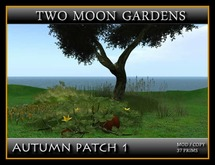 AUTUMN PATCH 1*