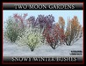 Snowy winter bushes