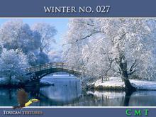 [Toucan Textures] Winter No. 027