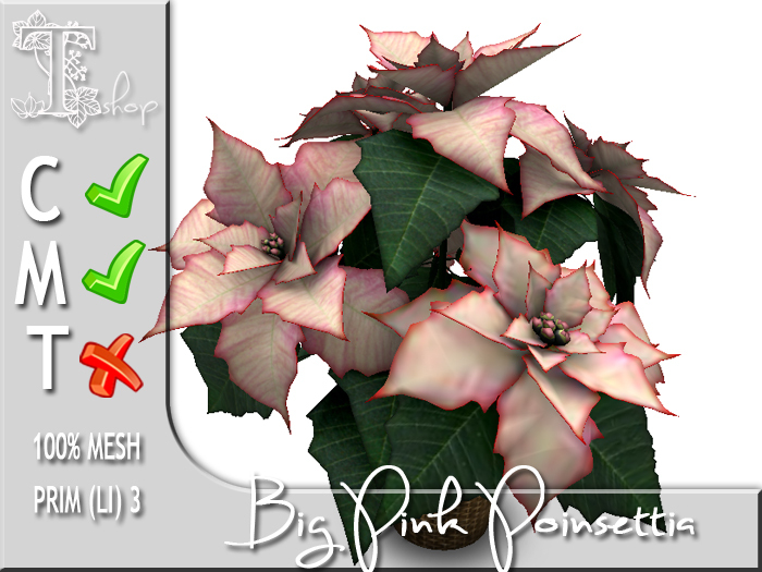 Terrashop - Big Pink Poinsettia    100% original mesh