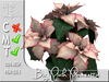 Terrashop - Big Pink Poinsettia    100% original mesh