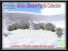 WINTER GARDEN PLANTS COLLECTION