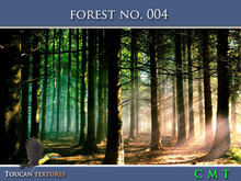 [Toucan Textures] Forest No. 004