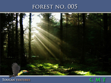 [Toucan Textures] Forest No. 005