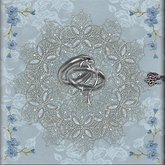 Boxed Wedding Photo Album Blue and Silver