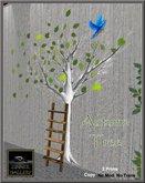 Zinner Gallery - Autumn Tree