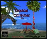 Zinner Gallery - Tropical Christmas Set