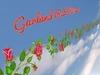 Garland Red Roses