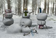 Sari-Sari - Snow Friends