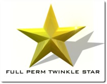 Twinkle MESH christmas star with script