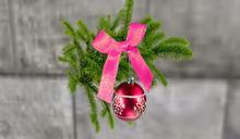 Pretty N Pink Hanging