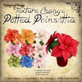 [DDD] Poinsettia Pot - Texture Change