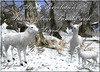 ~*SR*~ Siberian Deer Family with Sounds on/off Box