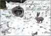 ~*SR*~ Static Snow Rabbit Family Box