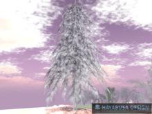 Winter Pine Conifer , True 3D Botanic Tree, copy&modifyer Tree