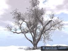 Winter Large Tree , True 3D Botanic Tree, copy&modify