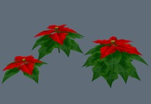 Poinsettia - Mesh - Full Perm