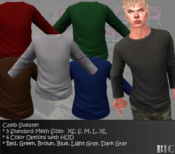 <BIC> Caleb Long Sleeve Sweater (Mesh)