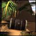 =Mirage= Old Treasure Chest