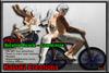Free *Kabuki *~* Couples Rotating Bicycle *~* 0409 V