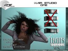 DQ...HAIR  fair 2013  GIFT