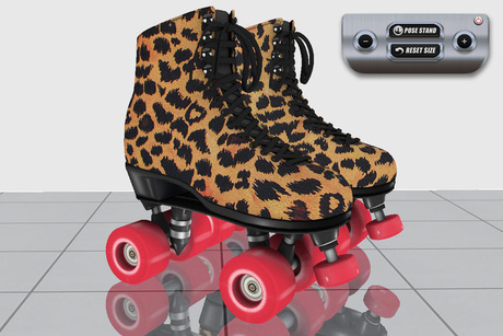 N00069 - Roller Skates