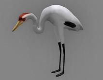 Crane - Mesh - Full Perm
