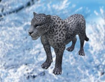 Snow Leopard - Mesh - Full Perm