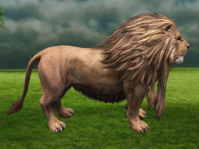Lion - Mesh - Full Perm
