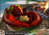 Lobster deco 2014 janv2