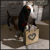 !! Follow US !! Valentine's My love dog COPY version