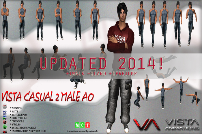 VISTA ANIMATIONS-CASUAL 2 MALE AO-UPDATED